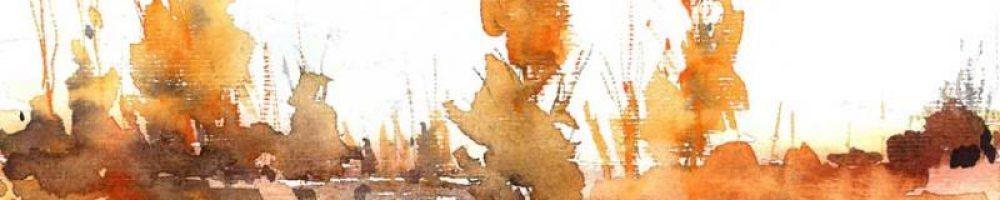 Fikriye Atik Güneş (10)